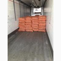 Продам товарный картофель, опт, голландских сортов 5+, производитель