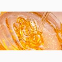 Закупаем от населения натуральный пчелиный мёд и воск оптом + мёд с Антибиотиком