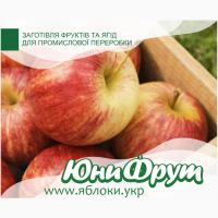 Покупаем яблоки для промышленной переработки от 20т