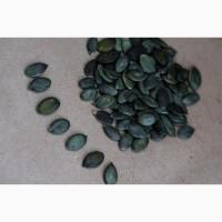 Купуємо гарбузове насіння по всій Україні сорт Госім#039;яна