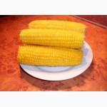 Кукуруза замороженная в початках и зерне высший сорт