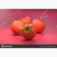 Продажа помидор розовых оптом на экспорт