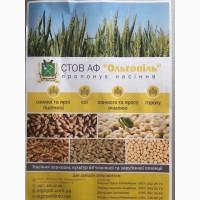 Продам насіння зернових, Кіровоградська область