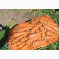 Продам морковь 2017. Отличное качество. От 3 тонн