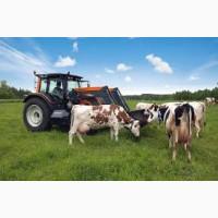 Выгодные условия кредитов для фермеров, Смела