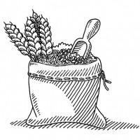 Предприятие - прозводитель продает отруби ячневые, пшеничные, мучка ячневая, пшеничная