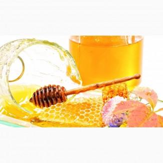 Круглый год покупаем мед