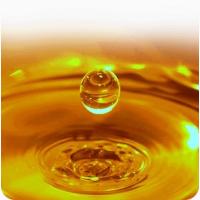 Куплю масло нерафинированое 1-й рост наливом от 22т