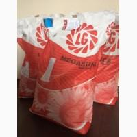Семена подсолнечника Limagrain Мегасан (2016)