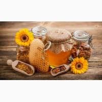 Продукты Пчеловодства Пчелиная Пыльца Восковой Моли Огневка Прополис Медовуха Перга Подмор