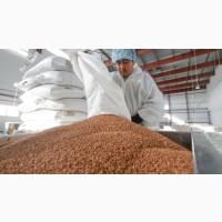 Завод по переработке масличных культур проводит закупку Сои