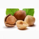 Продам Фундук лещина лесной орех харьков и Украина