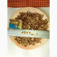 Продам семена чеснока Любаша (воздушные луковички), собрано вручную. Урожай 2017 года