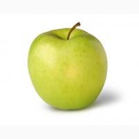 Продам яблоки сорта Мутсу, Муцу
