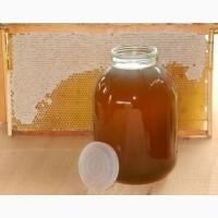 Продам мед і пилок