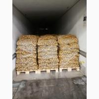 Продам картофель из Европы