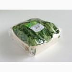 Био контейнеры из шпона для фасовки зелени, салатов, лука