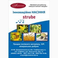 Посівна Озима пшениця ГЛАУКУС (Штрубе, Німеччина) - найвищий потенціал врожайності