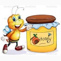 Мед оптом цена 37 гривен/кг