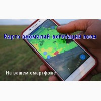 Создание карт нарушений вегетации полей на основе космоснимков, работаем по Украине