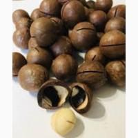 Орех макадамия в скорлупе, 1кг, орехи оптом в розницу