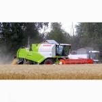 Услуги по уборке урожая зерновых Житомир, аренда комбайнов на уборку зерна