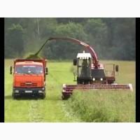 Услуги по уборке кукурузы на силос в Полтаве аренда кормоуборочного комбайна сенаж