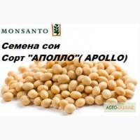 Продам насіння сої Aполло RR2