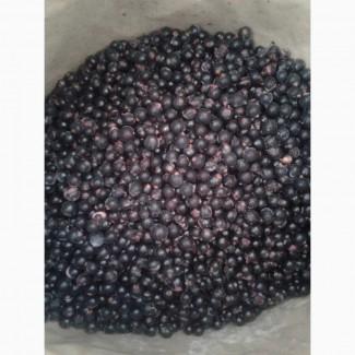 Продам заморожену ягоду чорної смородини