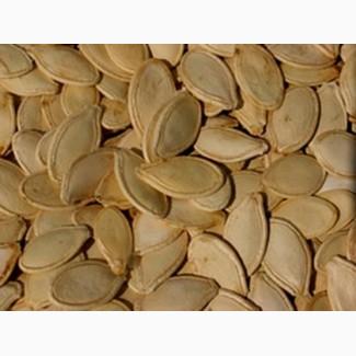 Купим семечку тыквы разных сортов, фасоль