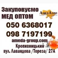 Закупівля меду оптом. Соняшник 2018-2019 року