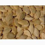 Продам гарбузове насіння