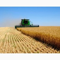 Продам действующие Агропредприятия 10000га Колхоз, Черкасская