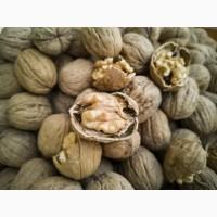 Продам грецкий орех (целый) урожай 2019