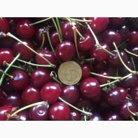 Продаємо свіжу черешню з саду врожаю 2021