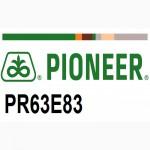 Семена подсолнечника Пионер ПР63Е83 (Pioneer PR63Е83) под гербицид Эксперсс