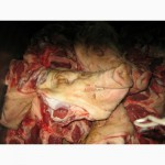 Продам головы свинины