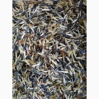 Продам насіння чорнобривців бархатцы