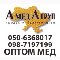 АМЕДА ГРУП Закуповуємо мед оптом Кіровоградська, Миколаївська обл