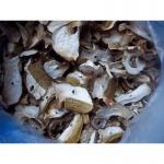 Продам сухие белые грибы из закарпаття
