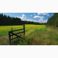Купим землю 100-150 га (ОСГ, сады) до 100 км от Киева