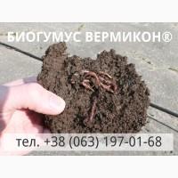 Биогумус ВЕРМИКОН (вермикомпост) оптом от производителя