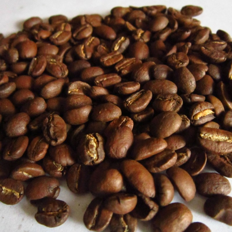 Coffea arabica care instructions