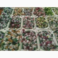 Шоколадные конфеты с натуральными фруктами. Сухофрукты в шоколаде оптом в розницу. Конфеты
