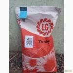 Гибрид, семена, посевной материал подсолнечника Лимагрейн Тунка