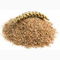Закупляємо висівки пухнасті пшеничні. житні, зерновідходи