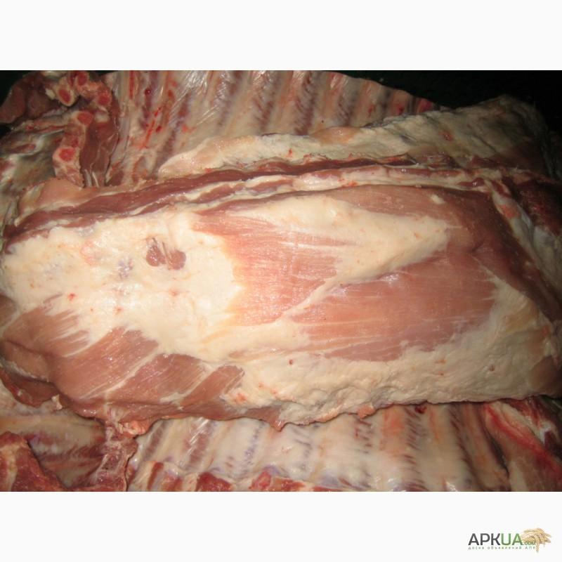 Реализуем мясо свинины ОПТ РОзница — APKUA 758dfb027fd3e