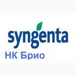 ������ ������������� �������� �� ���� (Syngenta NK Brio)