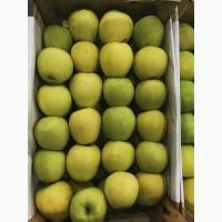 Продам яблоко оптом. великий ассортимент сортів