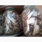 Продам гриби белие